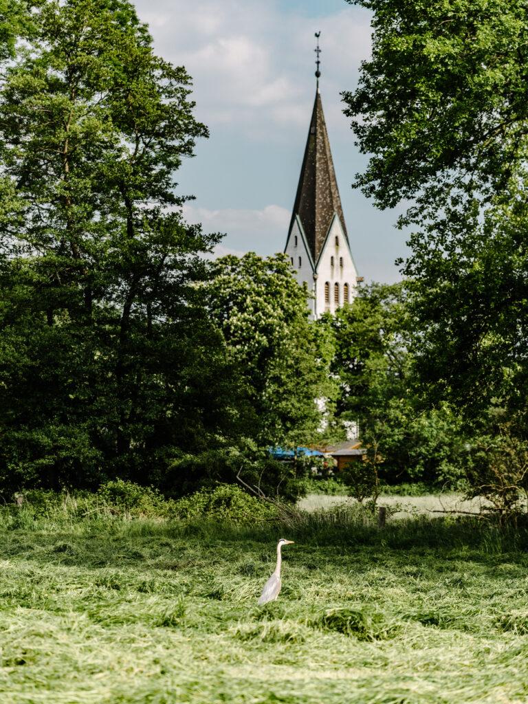 Die 20 schönsten Parks und Grünanlagen in Dortmund
