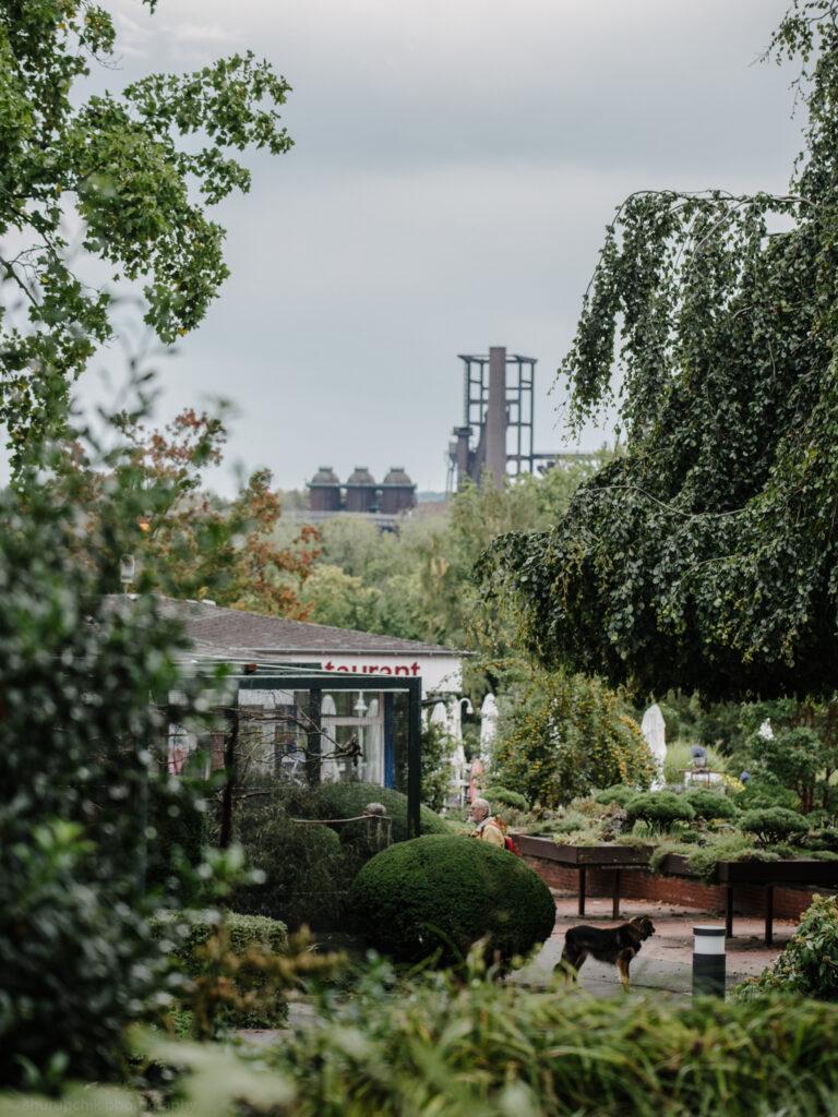 Unsere 15 Lieblings-Wasserspielplätze in Dortmund und drum herum