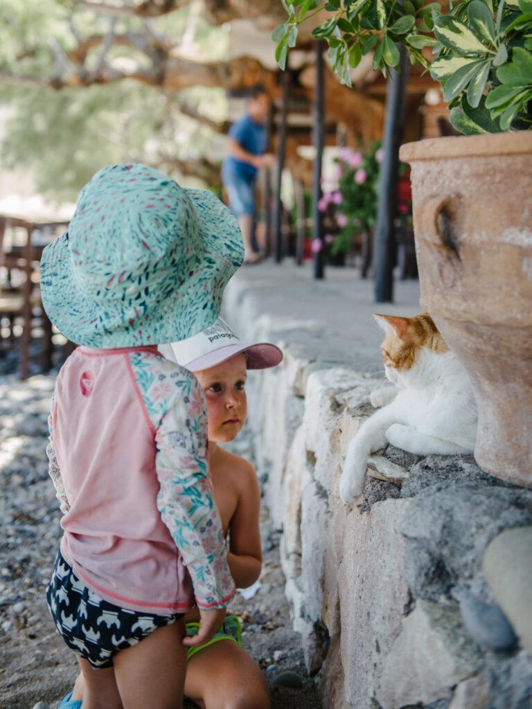 katzen und kinder Kreta Griechenland